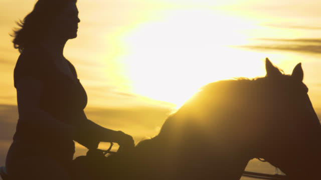 Very dramatic silhouette of adult equestrian woman riding Thoroughbred English style horse left to right with golden rays of setting Pacific Ocean sun long lens slow motion 17_1 video