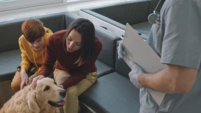 vídeos y material grabado en eventos de stock de consulta veterinaria en la clínica - toma mediana