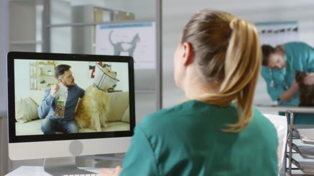 vet ge råd om sällskaps djur församlingen online - veterinär, undersökning bildbanksvideor och videomaterial från bakom kulisserna