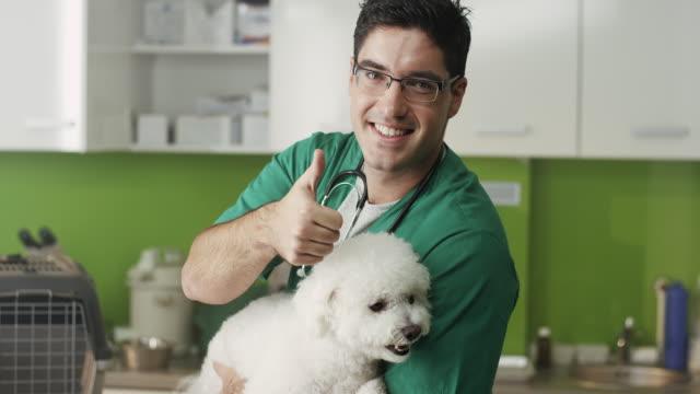 小さな犬を調べることを親指を押し込む獣医 - ビションフリーゼ点の映像素材/bロール
