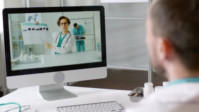 Veterinarian Watching Refresher Course Online Over the shoulder shot with rack focus of male veterinarian sitting at his desk and video calling female colleague in glasses showing him chart and explaining something during refresher course online meeting stock videos & royalty-free footage