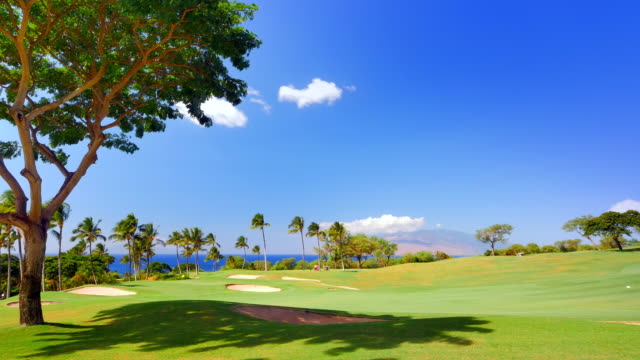 Vibrant Blue Sky and Green Grass Landscape, Tropical Golf Course  in Paradise video