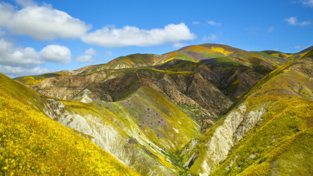 Vibrant flower covered hills & Rolling Clouds, Mckittrick Summit, Carrizo Plain video