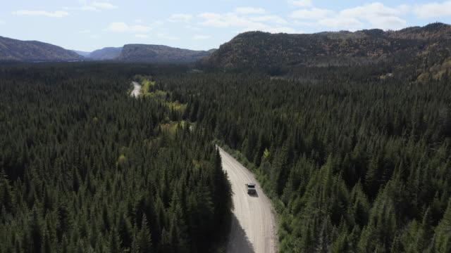 vídeos de stock, filmes e b-roll de vídeo, vista aérea de um veículo na estrada que conduz através da floresta colorida bonita do outono na queda ensolarada, quebeque, canadá - caminhonete pickup