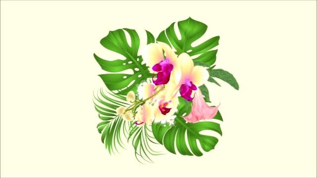 vidéos et rushes de bouquet de boucle parfaite animation vidéo avec tropical fleurs composition florale, avec belle orchidée jaune, palmier, philodendron et brugmansia vintage - composition florale