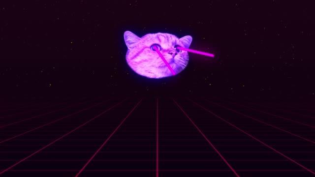 vídeos de stock, filmes e b-roll de animação de vídeo com rosto de gato na grade está atirando um laser fora de seus olhos. - gato doméstico