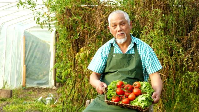 4K Video Asian farmer holding basket with vegetables video