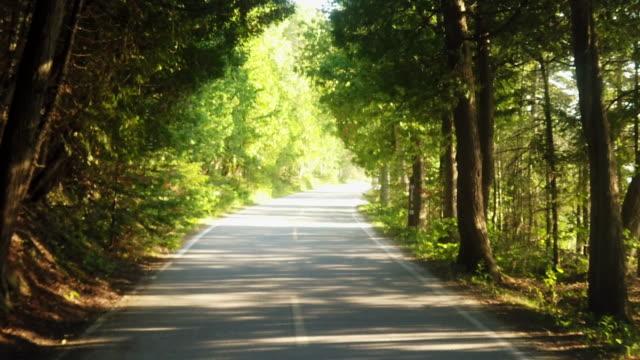 video clip of a beautiful bicycle ride around mackinac island, michigan - strada tortuosa video stock e b–roll