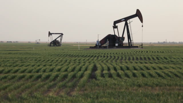 HD video Crop rows and oil pumps western Kansas video