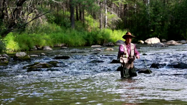 HD-Videos. Fly fisherman – Video