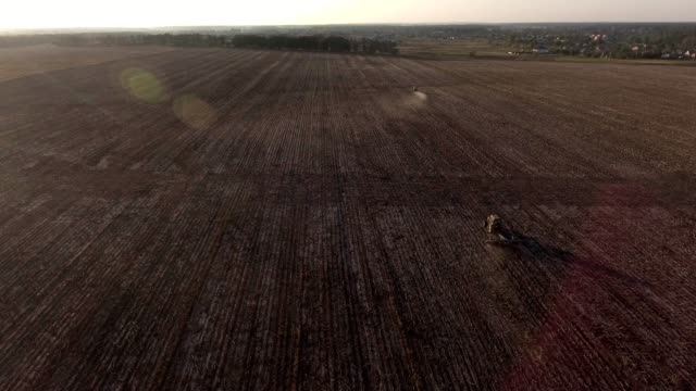 Video Footage aerial view combines harvesting top view - vídeo