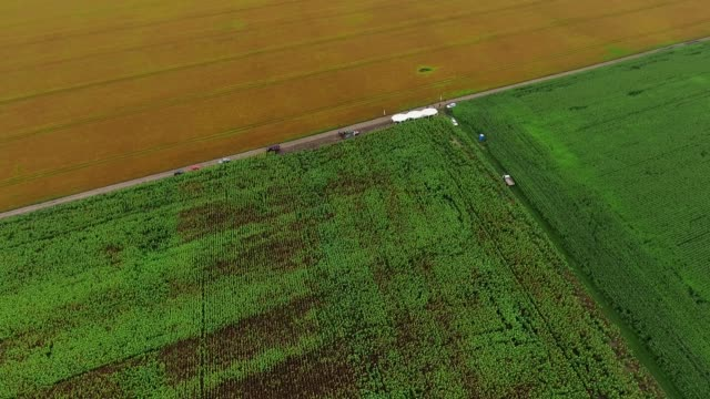 Video Footage aerial view combines harvesting, top view - vídeo