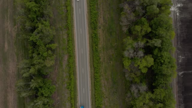 video footage of a road with a car aerial view of a country side trees on both sides - quadcopter filmów i materiałów b-roll
