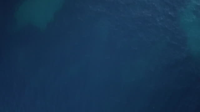 video from above. aerial view of the turquoise water of the emerald coast, sardinia, italy - mar mediterraneo video stock e b–roll