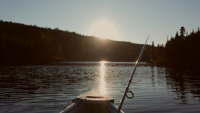 Video of a fishing lake at sunset. 4K Video of a fishing boat sailing on a lake with forest in background in Lanaudiere area, Quebec during the fishing season. fishing rod stock videos & royalty-free footage