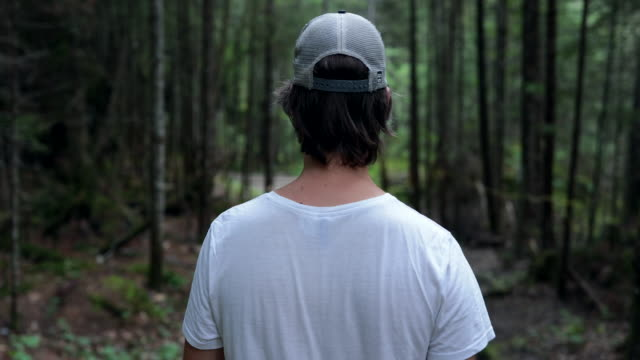 4K Video of a Man Hiker Walking and Exploring the Forest 4K Video of a Man Hiker Walking and Exploring the Forest life balance stock videos & royalty-free footage