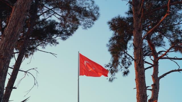 vídeos de stock, filmes e b-roll de vídeo 4k de uma bandeira turca ondulada entre árvores no céu azul com vento de fundo. - país área geográfica