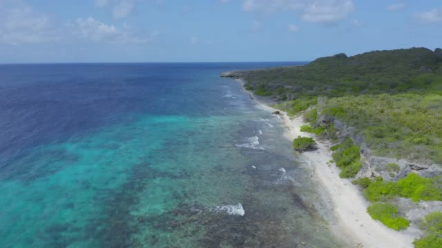 4K Video of Aerial View of Caribbean Sea in Curacao 4K Video of Aerial View of Caribbean Sea in Curacao curaçao stock videos & royalty-free footage