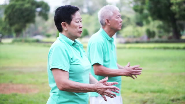 Video of Asian Senior Elderly couple Practice Taichi, Qi Gong exercise outdoor video