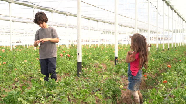 HD Video Of Brother And Sister Playing In Flower Garden