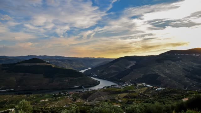vídeos de stock e filmes b-roll de video of douro valley at sunset - douro
