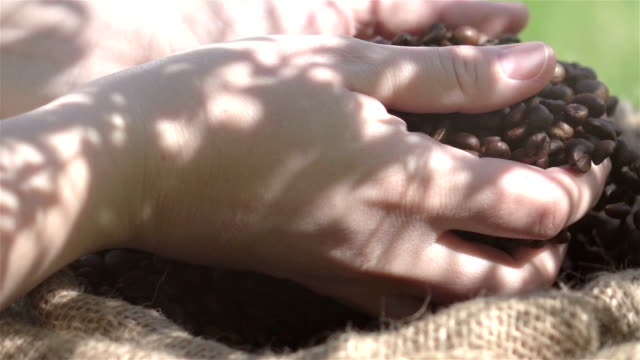 Video of falling coffee beans in real slow motion video