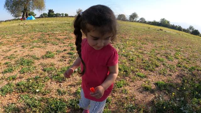 4K Video Of Girl Picking Up Red Poppy Flower In Nature
