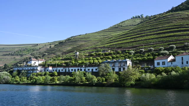 vídeos de stock e filmes b-roll de video of old wineries of the ribeira del douro_portugal - douro