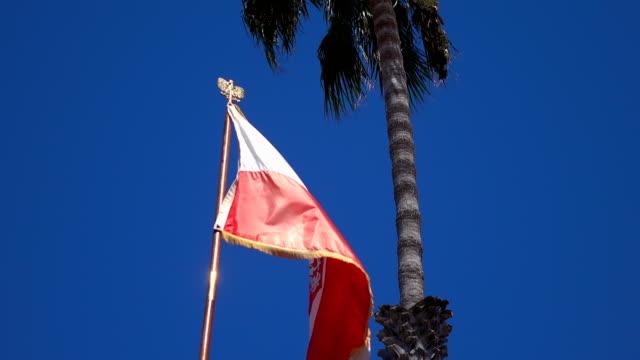 Video of Polish flag in 4K video