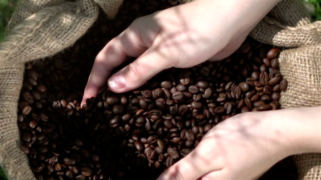 video di mostrare chicchi di caffè reale 1080p slow motion 250fps - coffee farmer video stock e b–roll