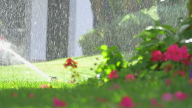Vidéo d'arrosage dans le jardin en 4K - Vidéo
