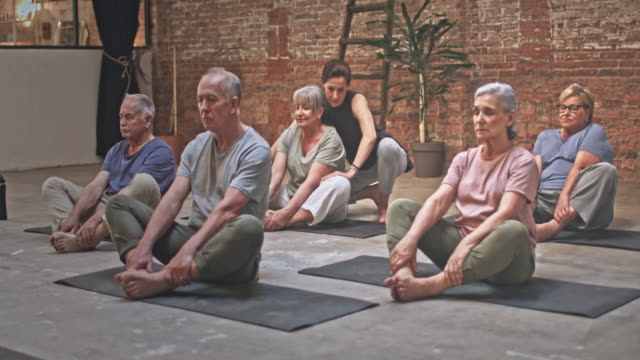 Video of teacher with group of Seniors Exercising in Yoga Class video