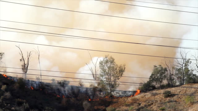 4K video of the wildfire in California 4K video of the wildfire in California. 2018 has been one of the most destructive wildfire seasons on record in California, with a total of 7,579 fires burning an area of 1,667,855 acres (6,749.57 km2), the largest amount of burned acreage recorded in a fire season, according to the California Department of Forestry and Fire Protection and the National Interagency Fire Center, as of November 11. california stock videos & royalty-free footage
