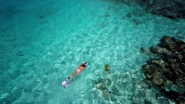 vídeos y material grabado en eventos de stock de video de mujer irreconocible de buceo en el caribe - tubo