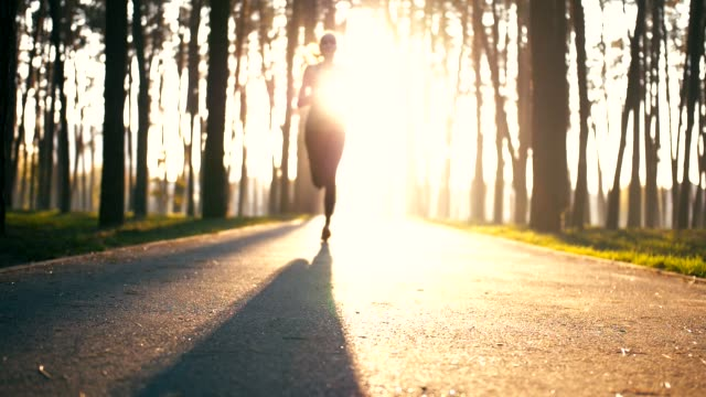 video of young woman shows up from lights of morning sun. she runs very fast. girl passes camera and continuous jogging fast. young woman is healthy and slim - figura femminile video stock e b–roll