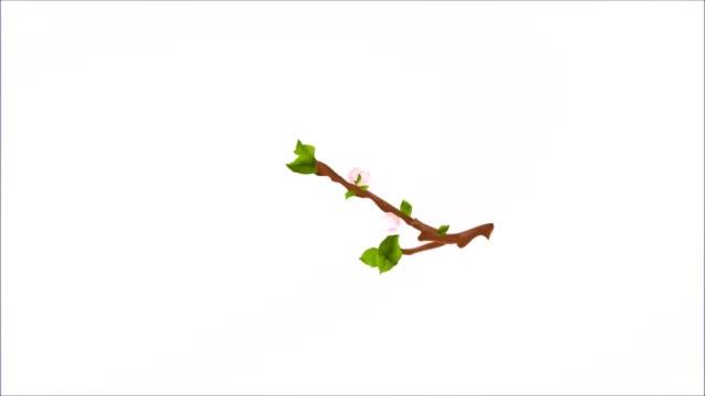 sömlös videoslinga animering av illustration säsong vinter, vår, sommar, höst apple trädgren med blommor och äpplen vintage - äppelblom bildbanksvideor och videomaterial från bakom kulisserna
