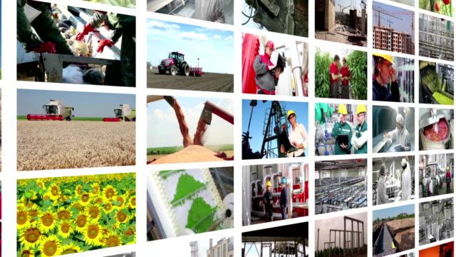 vídeos de stock, filmes e b-roll de produção industrial de montagem de parede de vídeo - economy