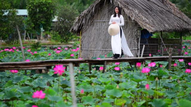 vietnam women hold lotus walking on lotus field, vietnam - sud est asiatico video stock e b–roll