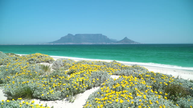 View across the bay to Table Mountain, Cape Town, South Africa Landmark of Table Mountain, Cape Town, South Africa table mountain national park stock videos & royalty-free footage