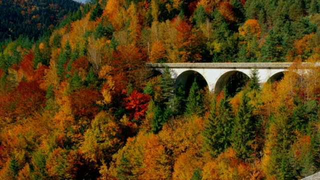 View at picturesque arch bridge through colorful autumn forest video
