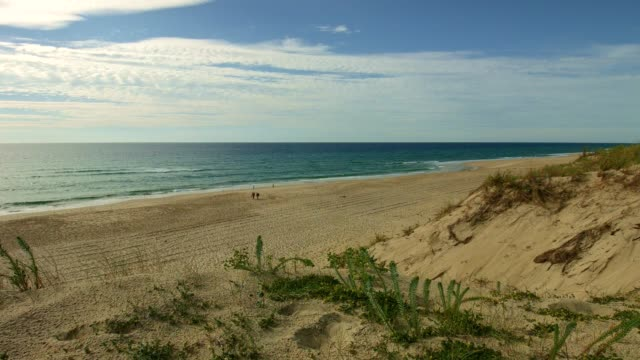 View at the Atlantic ocean from dune at beach video