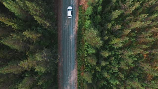 visa från ovan av drivande bil i pinjeskog. aerial drönarvy av grusväg, följande vit bil - summer sweden bildbanksvideor och videomaterial från bakom kulisserna