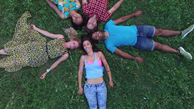View from above of friends forming a star shape lying in grass video