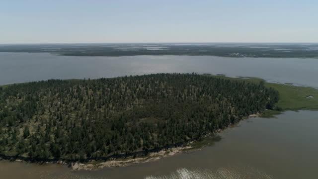 vídeos y material grabado en eventos de stock de vista desde arriba sobre la tundra del bosque costero. río e islas con taiga. - anclado