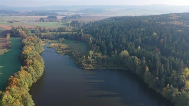 pitoresk gölün etrafındaki orman manzarasının drone'undan görünüm - gazlı bez stok videoları ve detay görüntü çekimi