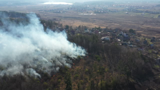 View from drone to fire in forest.