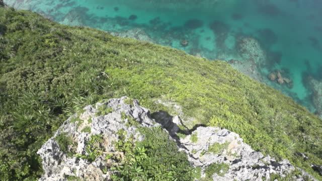 View from Iguana Rock in Irabu island, Okinawa video