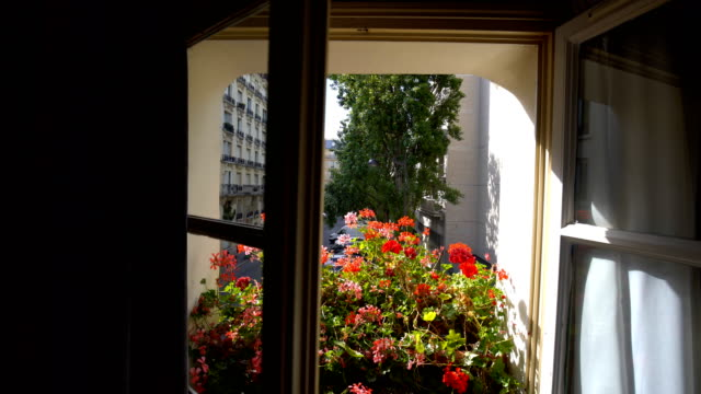 View from room in paris view from room in paris flower pot stock videos & royalty-free footage