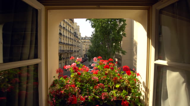 パリの部屋からの眺め ビデオ