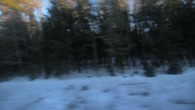 View from the window of a passenger train. - vídeo
